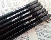 Harry Potter Hogwarts Charms & Spells Hand Stamped Pencils - Set of 6 Black HB Pencils - Stationery