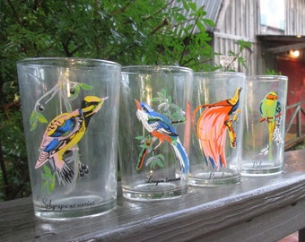 Four Vintage Beverage Glasses - Tropical Birds - Seven Ounce Tumblers