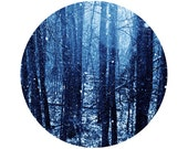 Winter Decor, Blue Forest Photography, Nature, Surreal, Cold Photo, Snow, Holiday, Circle, Round Image 8x8 inch Print, Wonderla