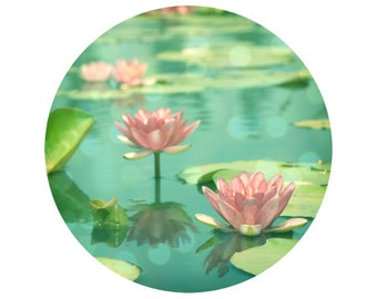 Lotus Flower, Pink, Teal, Pond, Green, Water, Nature Photograph - Circular image on a 5x5 inch Fine Art Print -Dancing in Stillness Circle