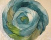 Handpainted Roving - Merino Wool