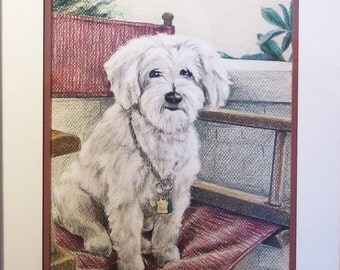 Original Colored Pencil Drawing -  Maltese Dog in Director's Chair with 12x16 Inch Mat - Dog Painting - Pet Portrait - White Dog