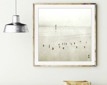 "Minimal wall art - Seashore birds - black and white photography - pale gray decot - shore birds - rustic beach nautical 16x16 ""Gray Tide"""