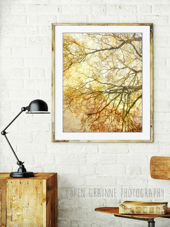 Gold tree wall art, nature photography, autumn yellow tree, art print, amber gold living room wall art - Canopy