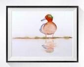 Wild Duck Painting bird illustration print duck watercolor painting wild bird art, Wildlife Art, Nature artwork woodland painting