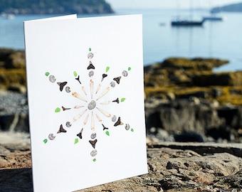 Seashell Snowflake Notecards - package of 5 - shell art, seashells, shark teeth, sea glass, green, black