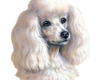 POODLE Mini (WHITE) Dog Head. Twelve Identical 6 inch Fabric Squares for Quilting and Sewing