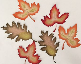 Bright NEW Autumn Leaves for Fall Crafts - Iron On Fabric Appliqués