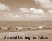 Special Listing for Alicia