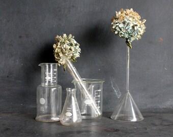 Vintage Glass Pyrex Funnel, Chemistry Lab Beaker, Plant Waterer, Vase, Mad Scientist Vase Weird Science Mid Century Bud Vase, Feather Holder