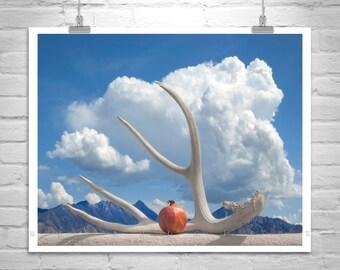 Surreal Art, Still Life Photo, Fine Art Photography, Pomegranate Art, Sky and Clouds, Tucson Arizona, Art for Living Room, Lapis, Cobalt