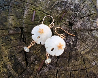 Sand dollar and Star fish earrings, with Aqua Marine Faceted stones, 14kt gold filled findings