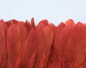 GOOSE FEATHERS, Dark Burnt Brick Red / 464