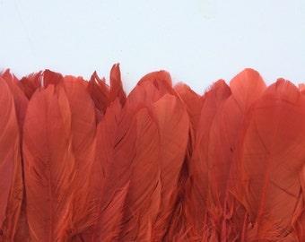 GOOSE FEATHERS, Dark Burnt Orange / 464