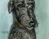 Deerhound Art Original