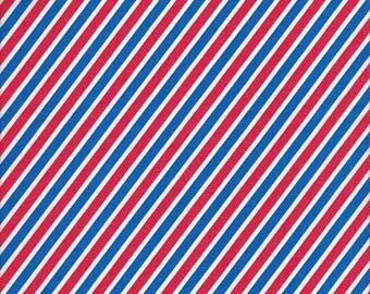Robert Kaufman Handle With Care Stripe in Bright - Half Yard