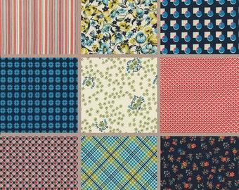 SALE - Free Spirit Fabrics Denyse Schmidt Shelburne Falls Charm Pack