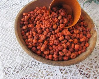 BULK Putka Pods Bowl Fillers, 14 Cups Putka Pods, Easy to Scent, Low Shipping, Mini Pumpkins