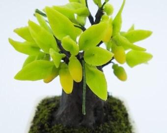 Miniature Polymer Clay Flowers Supplies Persimmon Bonsai 1 piece
