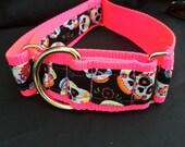 Sugar Skulls, Day of the Dead martingale collar on hot pink webbing, training collar, non slip, Greyhound dog collar.
