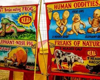 Carnival Oddities 2 Fine Art Print- Carnival Art, County Fair, Nursery Decor, Home Decor, Children, Baby, Kids