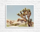 BUY 2 GET 1 FREE California Photography, Joshua Tree Photograph, Desert Photo, , Brown Tone, Yucca Tree, Home Decor - Giant Rocks