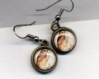 Owl Earrings, Surgical Steel Earrings , Little Owls in White and Caramel Earrings. Hoot Earrings