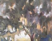 "Impressionist Landscape, Florida landscape, Oak with Spanish Moss, 8x10"" Original Oil Painting ""Golden Hour"""