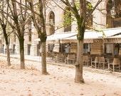 Paris Photography, Paris let's Fall in love, autumn in Palais Royal, Paris France, Paris Gardens, Paris decor, Nature, Spring in Paris