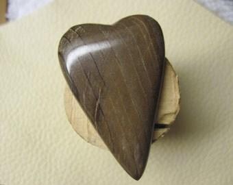Big wooden heart petrified wood freeform cabochon