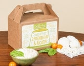 Dairy Free Mozzarella & Ricotta Kit, Vegan and Paleo Friendly - NO Gluten, Carageenan or Soy