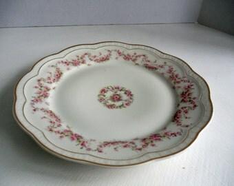 Zeh Scherzer & Co. Bavaria Scalloped Pink Rosewhite Background Dinner Plate