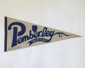 Pemberley Swim Team Pride and Prejudice varsity vintage style pennant banner 8 1/2 by 19 wall art decor Jane Austen