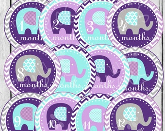 MONTHLY IRON-ONS Decals or Monthly Stickers - 12 Monthly iron on heat transfer - Baby girl - Elephants - Purple & aqua (Style#A09)