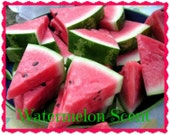 WATERMELON Scented Melts - Soy Wax - Fruit Scented - Wickless Candle - Soy Tarts - Highly Scented - Hand Poured -  Hand Made In USA