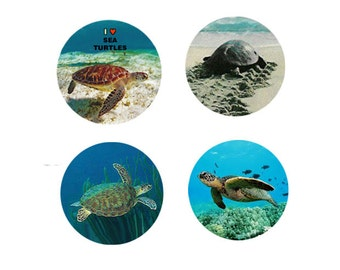 Sea Turtle Magnets:  4 Sea Turtles in their Habitat for your home, your collection,  or to give as a unique gift