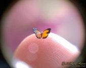 "Malayan Sunbeam, Miniature Butterfly, Curetis Santana Malayica, Dollhouse Scale, 1:12, 5/32"" Wingspan, 4 mm, Micro, GFF"