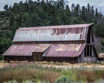 Barn - Colorado Barn - Country - Old Barn - Barn in the Summer - Rustic Barn - Fine Art Photography