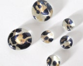 leopard print magnet or push pin set - made from recycled magazines, stocking stuffer, hostess gift, graduation