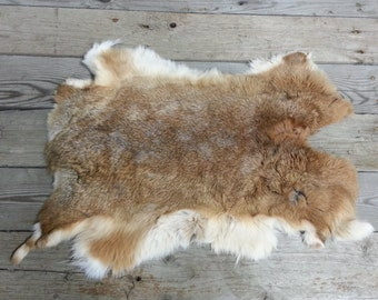 One Average Rabbit Hide as Shown. Lot No. 160626-V