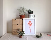 Gyp botanical print in bright colours limited edition Risograph 'Botanique Electrique' collection baby's breath
