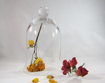 "Glass Cloche, Tall 9"" Bell Jar"
