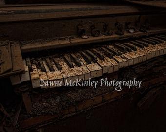 Abandoned Organ Keys Photograph 5x7, 8x10, 11 x 14, or 16 x 20