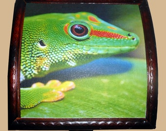 Gecko Treasure box