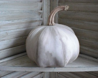 Primitive White Pumpkin