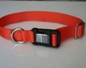 Medium dog collar 1 inch polyester webbing hunter orange with reflective buckle