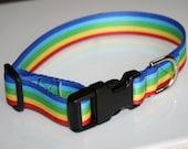 Medium dog collar 1 inch polyester webbing rainbow colors