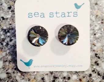 Michelle's sea stars
