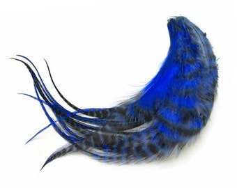 USA Hair Feathers, 1 Dozen - Medium ROYAL BLUE Grizzly Rooster Feathers: 519