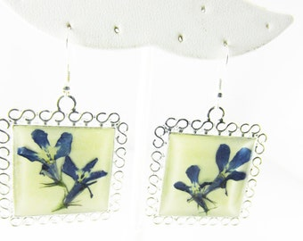 Blue Lobelia Earrings, Real Flower Earrings Pressed Flower Jewelry, Resin (1691)